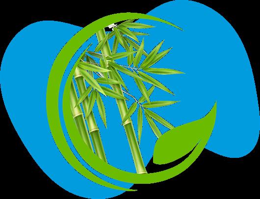 illustration de bambous