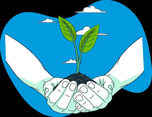 Image de mains portant une plante